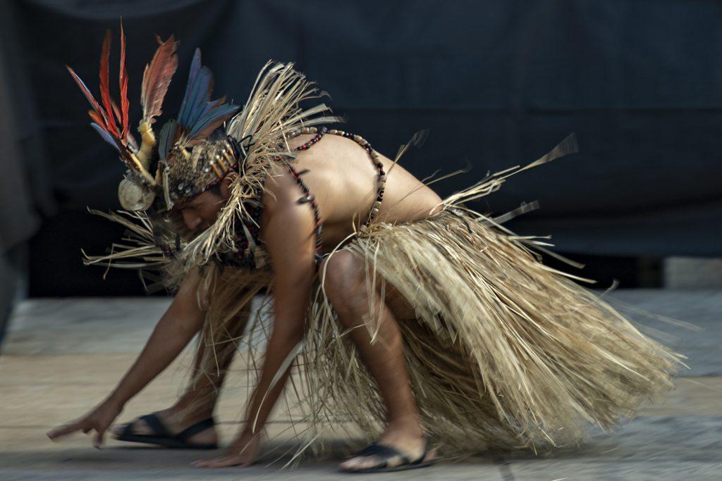 photographe à la réole Shoot pour capturer l'instant du festival folklorique à la réole avec un danseur en tenue raphia sur un type de photographie plein air avec une lumière naturelle et sans fond de studio par un photographe pro pas cher