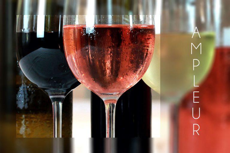 cherche un photographe pour photos d'entreprise verres de vin rouge, de vin blanc et de vin rosé aux restaurant aux fontaines à la réole présentés sur une photo couleur Communication d'entreprise et documents commerciaux